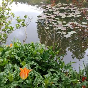 Giverny. Jardins de la Maison de Monet 3.